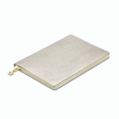 Sparkly silver notebook
